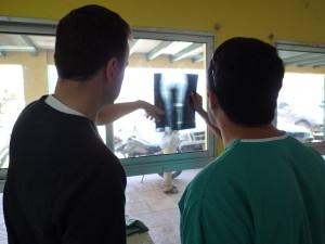 Dr. Steven Meier in Honduras