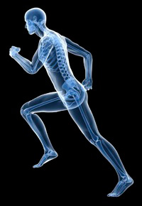 Orthopedic Surgery Specialist in Beverly Hills, CA
